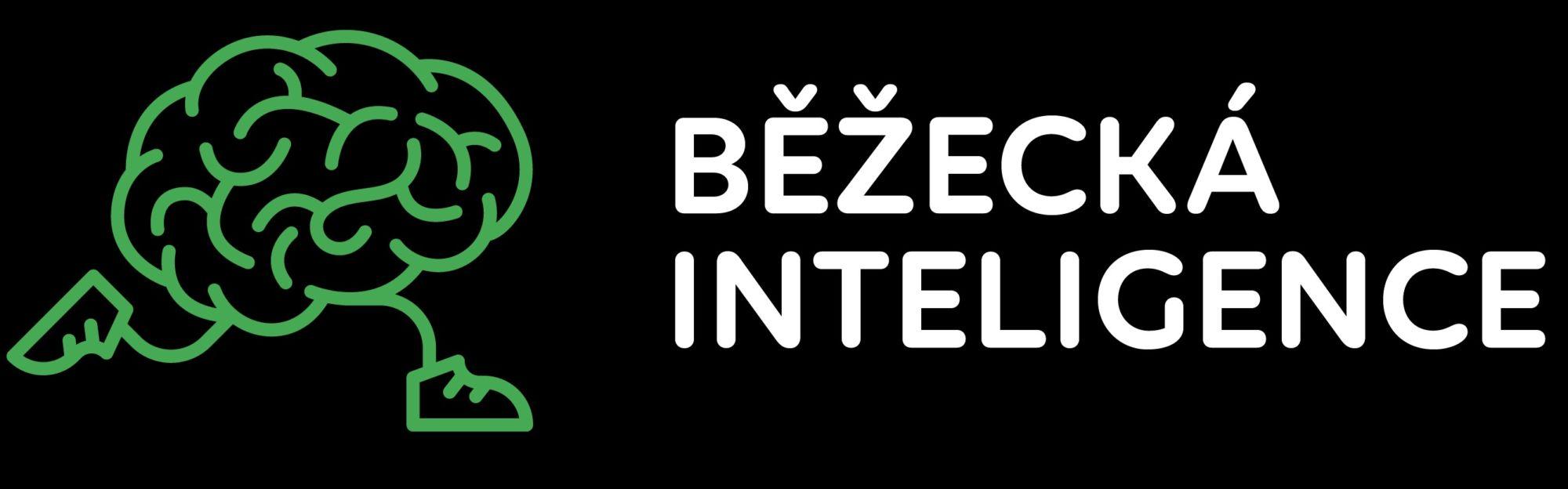 bezeckainteligence.cz